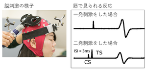 0825daisuke04